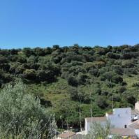 Panorámica de La Umbría. Foto. ÁNGEL MEDINA LAÍN