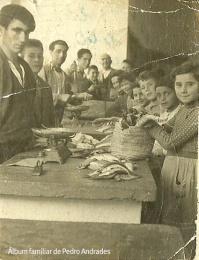 """EL MERCADO. Ésta era la imagen de la plaza de abastos de Setenil en 1953. Estaba situada donde ahora se ubica el supermercado de Conchi, al final del pecho de la Plaza. Según recuerda Pedrín Andrades (que aparece al fondo, con un cuchillo en la mano) era mucho más amplio que el actual, que se inauguró en 1965. De izquierda de derecha, José Hinojosa, Andrés, Juan el Pescaero, Pedrín y el repartidor del Correo. En el otro ala, Mariquita Parras, Juan el del Coro, Sebastián """"Tres chicas"""" y Trini, entre otros. El pescado que se ve frente al peso antiguo es bacalaílla. La imagen la tomó un fotógrafo de Ronda que se llamaba Miguel (no confundir con Miguel Martín)."""