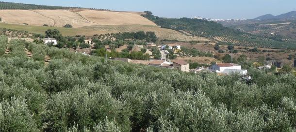 Vista de Olvera y El Tejarejo desde la cúpula de la ermita de San Sebastián. Foto: IMAGINA SETENIL