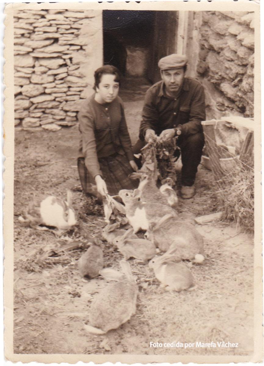"""CONEJOS Y GALLINAS. Paca y José el Caballito en la casa anexa a la ermita del Carmen, dando de comer a los conejos. Esta imagen es de 1966 o 67. Era habitual tener conejos y gallinas en las casas que se mataban de un """"mochazo"""" en el propio domicilio antes de la comida."""