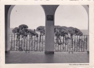 """El sensancional pinar de El Tejarejo en 1977. Entre los pinos, algunos de los más altos de la provincia de Cádiz y que dan forma al perfil de Setenil. Más información en este artículo de """"Setenil: Historia y Numismática"""" http://goo.gl/5luDQG"""