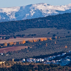 El paisaje de Setenil en la mirada de Mario G.Vargas