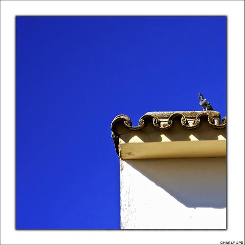 Fantástica composición con el intenso cielo veraniego de Setenil. Julio de 2009. Foto: CHARLY JPG, que nos manda saludos desde Catagena. Mäs imágenes suyas en este enlace http://goo.gl/3LNk37