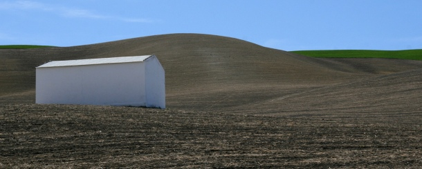 Finca labrada, justo en las últimas curvas para llegar a Setenil. Marzo de 2008. Foto: ADRIAN ELSTON. Más imágenes en http://bit.ly/1LkhADy