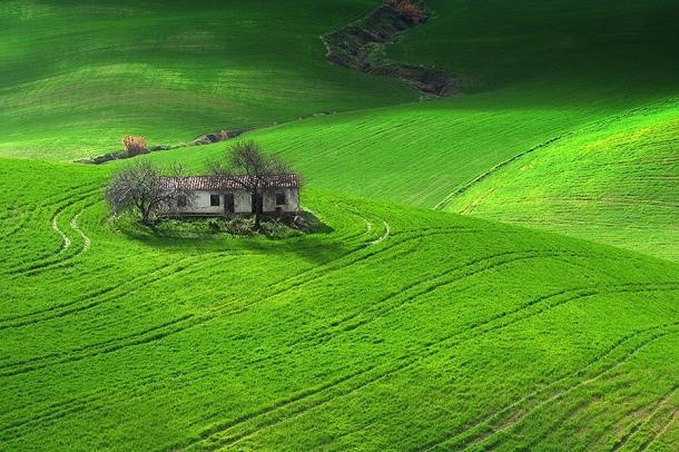Asombroso verdor cerca de Los Villalones. FOTO: GETTY IMAGES
