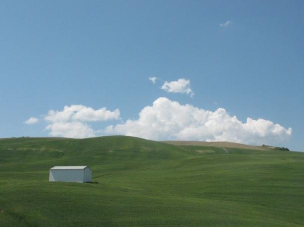 La misma parcela en mayo de 2011. Foto. JAMIE BROGAN. Más imágenes en http://bit.ly/1CTztoc