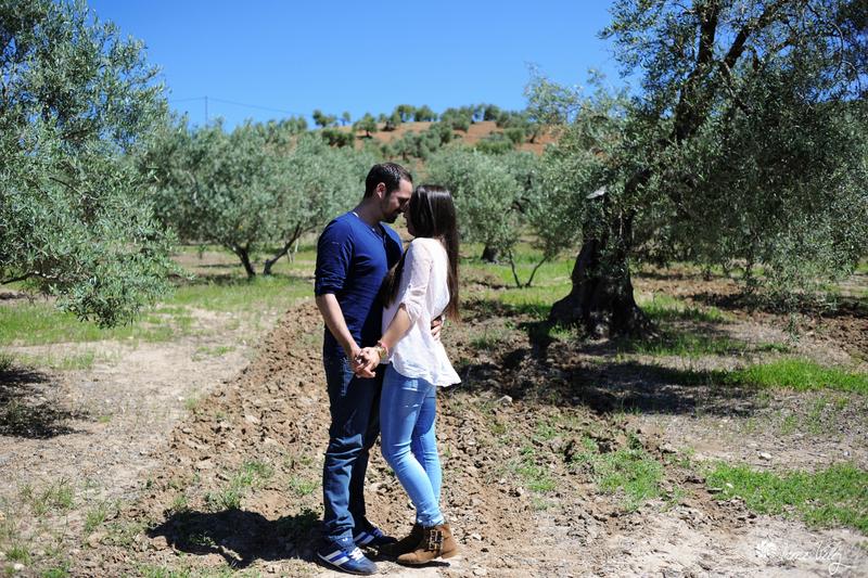 En un olivar de Trejo. Foto: IRENE VÉLEZ. Más imágenes en el blog http://goo.gl/I2NJFO