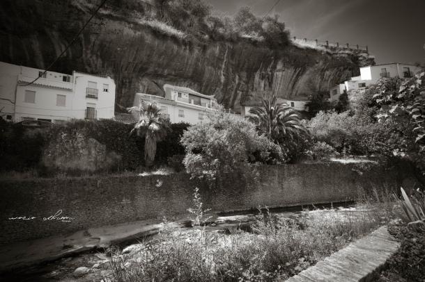 Esta imagen de Las Jabonerías tomada desde la calle Mina nos muestra la exhuberancia natural que ha ganado el río desde su encauzamiento. Arriba, la barandilla del mirador en el que estuvimos asomados. Foto: ROCÍO ALHAMA. https://flic.kr/p/fjKfJK