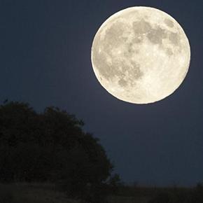 Blue Moon enSetenil