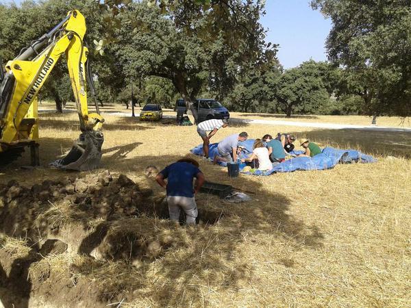 Trabajos de exhumación en los encinares del cortijo El Baldío, que lleva a cabo la Asociación para la Recuperación de la Memoria Histórica