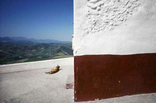 Olvera, 1988. Está considerada una de las obras más significativas de Masats en su última etapa, por su brillante composición. Foto: RAMÓN MASATS