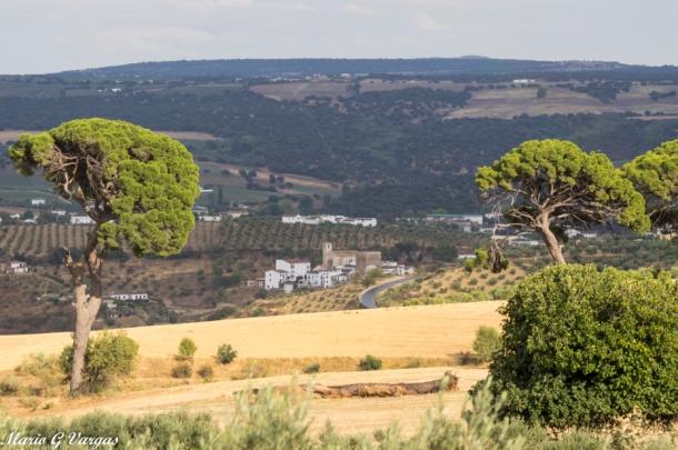 Vista de Setenil y sus alrededores desde los pinares del Tejarejo. En ese entorno se desarrollará la carrera. Los detalles del itinerario los tenéis al final del artículo. Más fotos de Mario García Vargas en este enlace de su recomendable blog https://goo.gl/qoLjXr