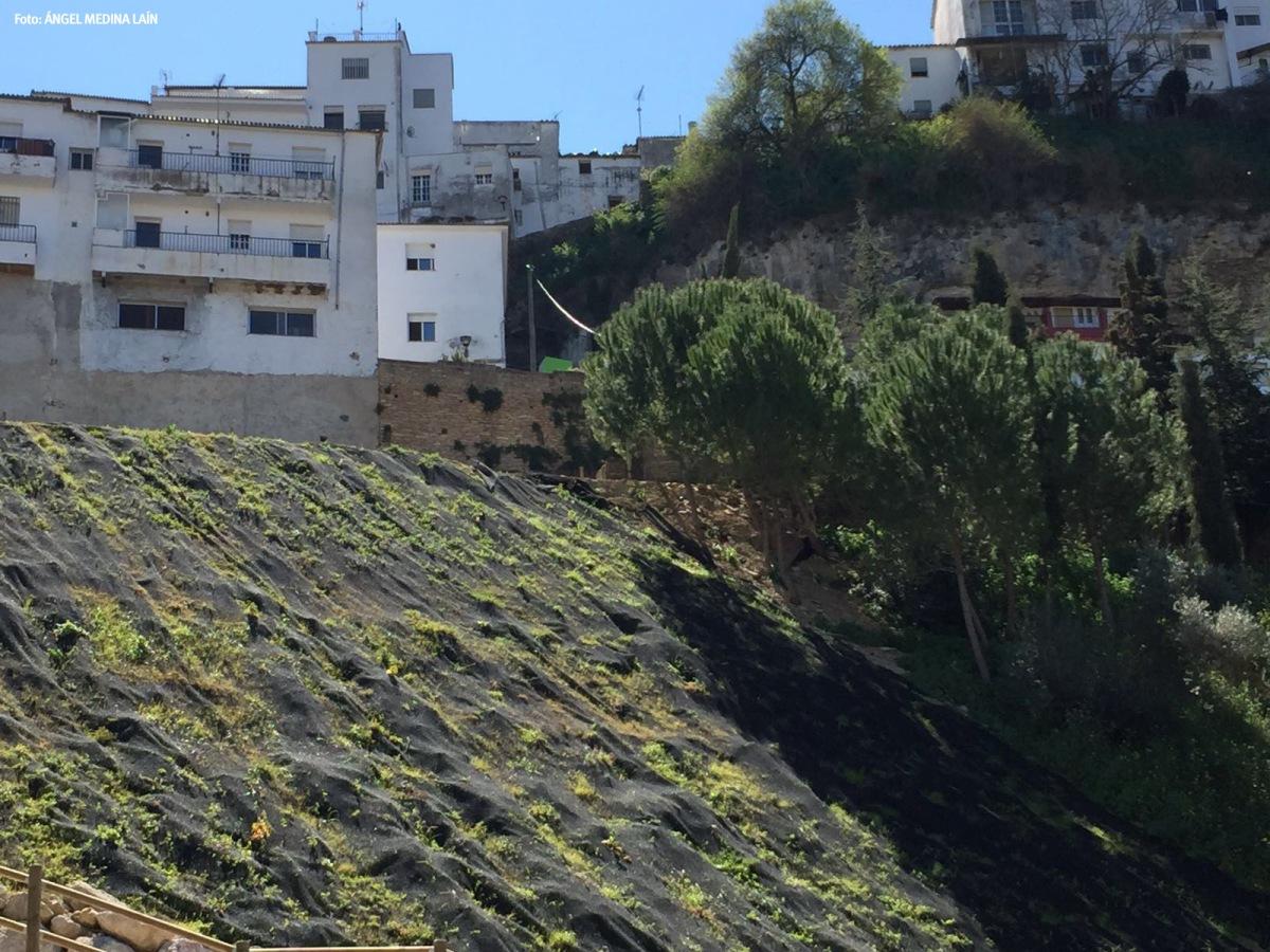 Ladera del Paseo del Río, elevada tras las riadas de 2009 y 2011 que arrasaron el proyecto original. Foto: ÁNGEL MEDINA LAÍN