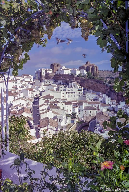 """""""Golondrinas y las uvas de las bodegas"""". Así tituló Mario esta imagen de hace unos años tomada desde la terraza de La Cantarería. Esta fotografía aún no se ha publicado en su blog, como tantas otras de su archivo propio. Foto: MARIO GARCÍA VARGAS"""