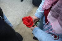 Una de las 60 rosas que se entregaron en honor de las víctimas del franquismo.