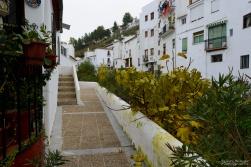 El paso al río por la casa de Juan Porras. Foto: ALEJANDRO BERMÚDEZ