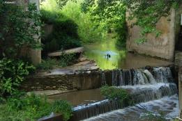 El río, bajo el Puente de Zamudio.