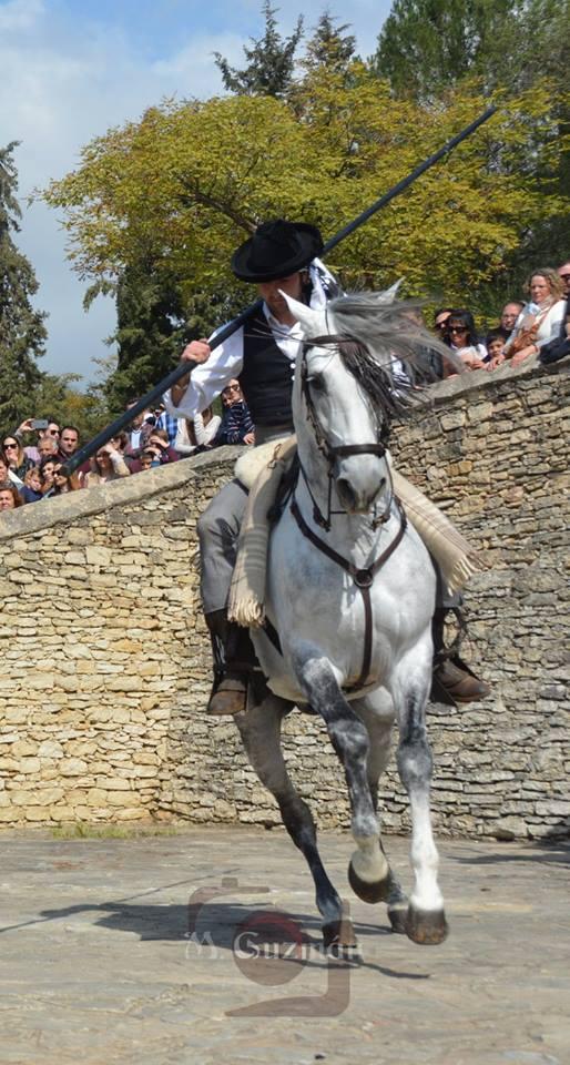 El 'garrochista' José Luis Molinillo hizo un alarde ecuestre (llegó a meter el caballo en el CIMO) y exhibió su maestría en el dominio del caballo. Foto: MARIA GUZMÁN JIMÉNEZ